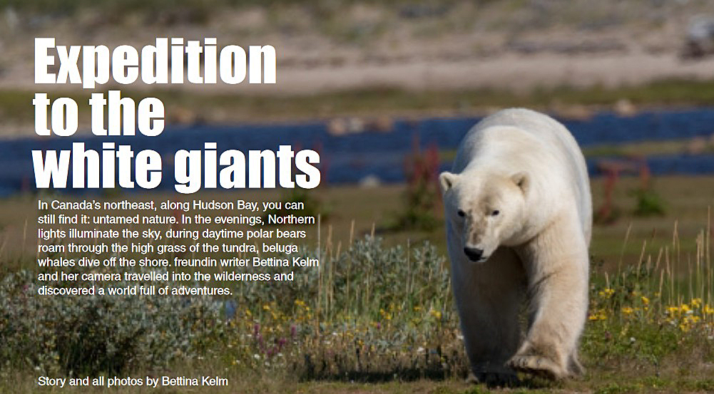 Expedition to the White Giants, an Arctic Discovery translated