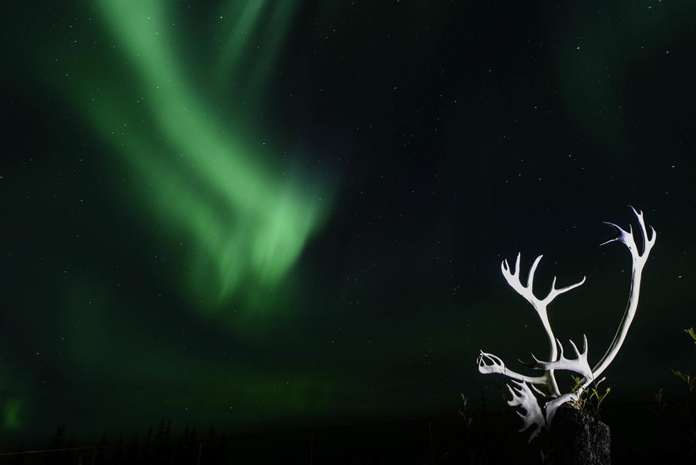 Northern lights over Nanuk. Jad Davenport photo.