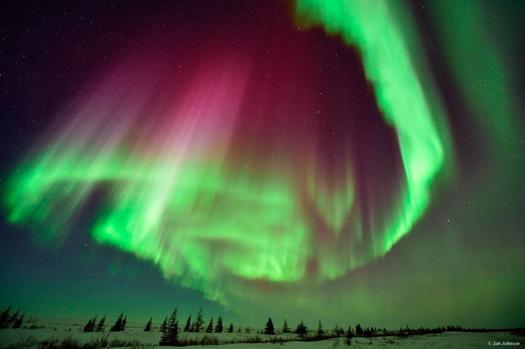 Northern lights over Nanuk Polar Bear Lodge. Polar Bear Photo Safari. Ian Johnson photo.
