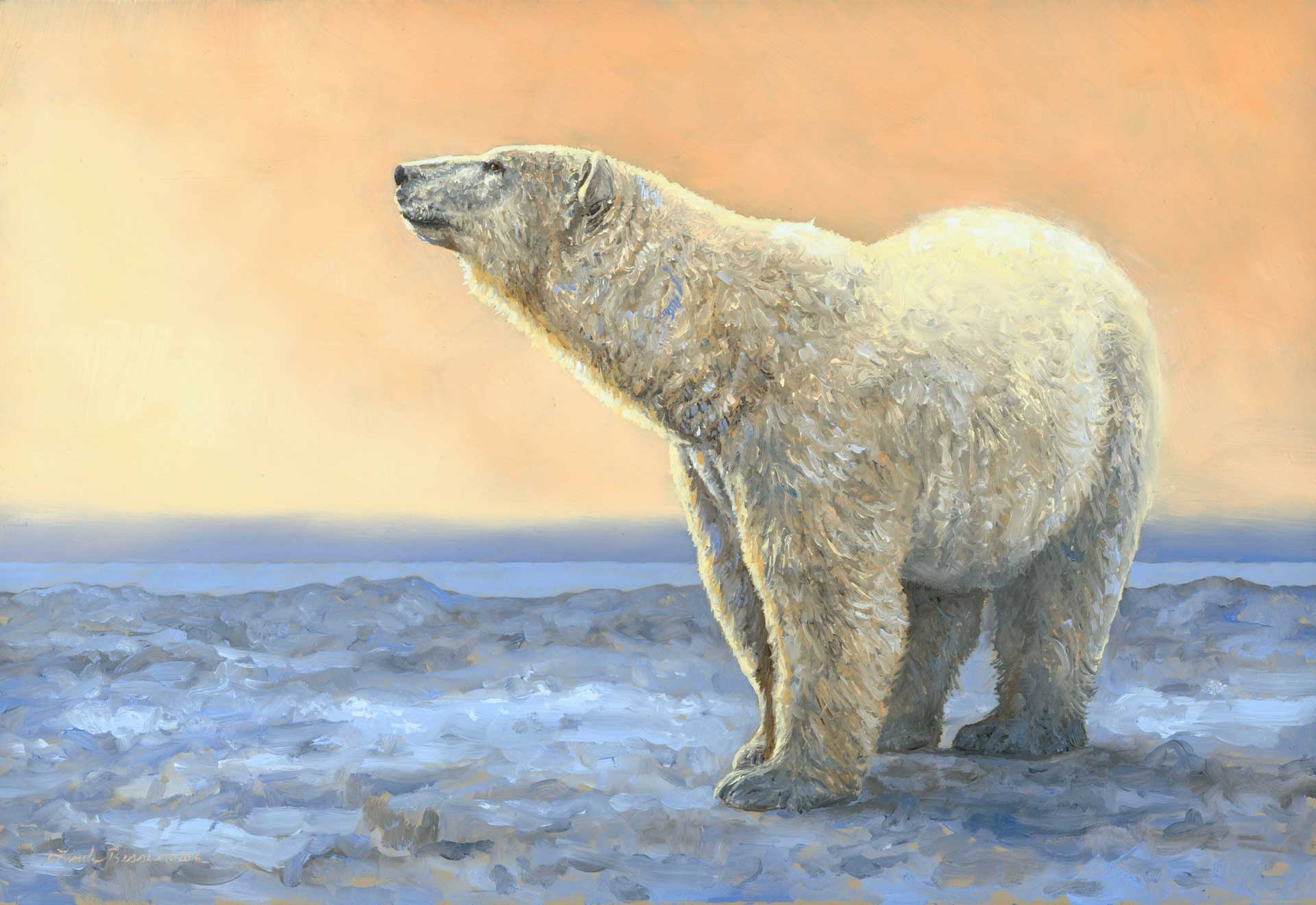 On the Ice. Original oil painting by Linda Besse. Inspired by a bear who came right up to the front door of Seal River Heritage Lodge.