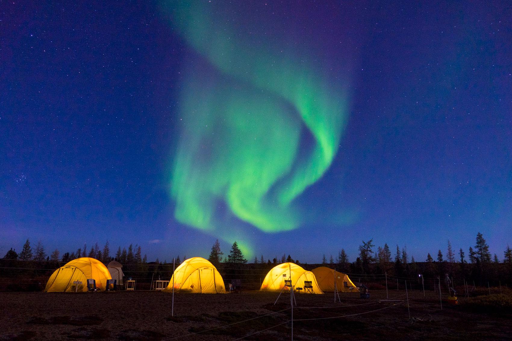 Northern lights. Tundra Camp. Arctic Safari. Jad Davenport photo.